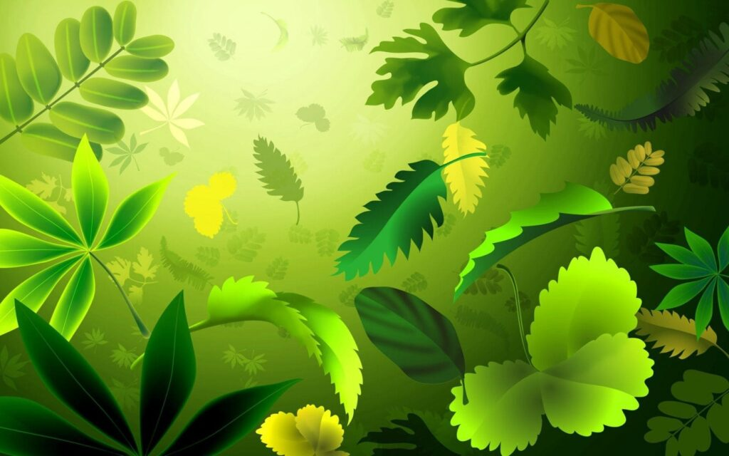 green wallpaper for computer