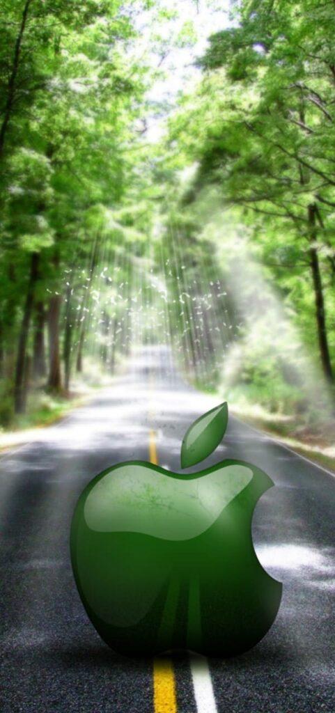 green iphone 11 wallpaper