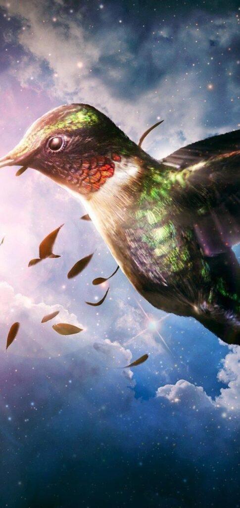 Birds Android Wallpaper