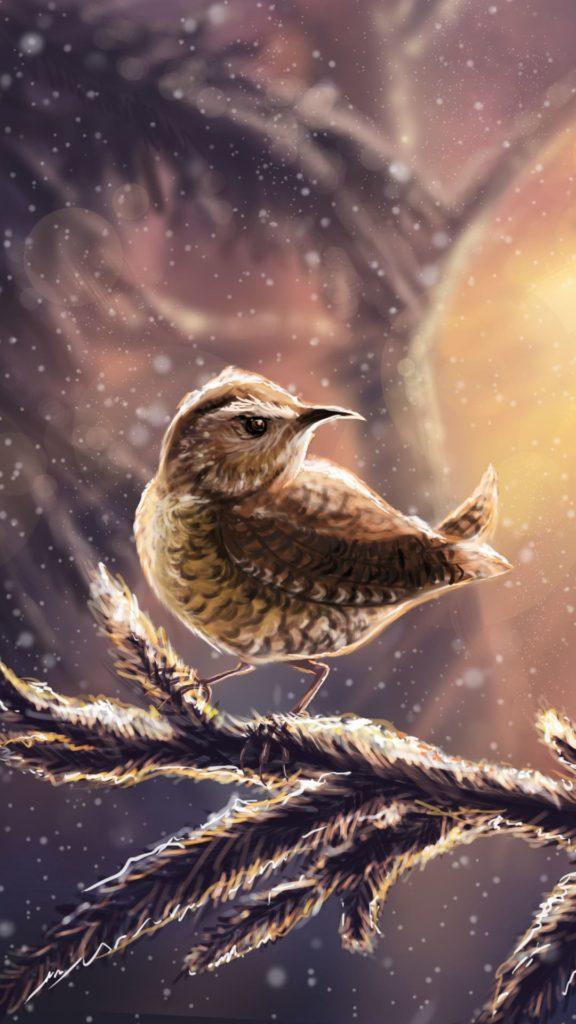 Birds Wallpaper 2020