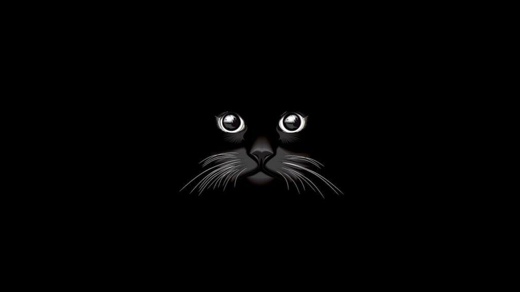 Cat Laptop Background