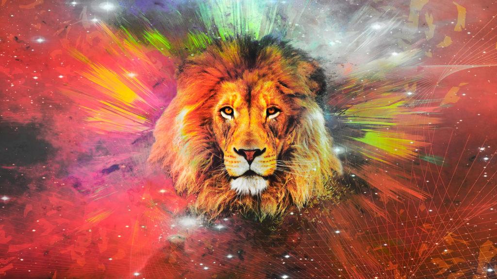 Lion Computer Wallpaper