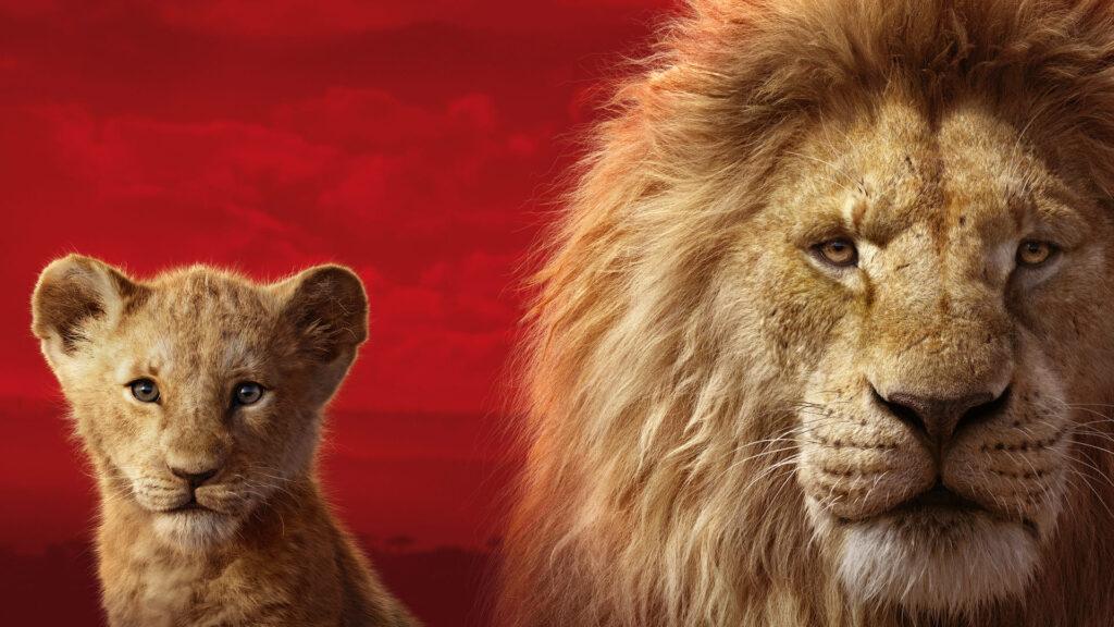 Lion Computer Wallpaper For 4k