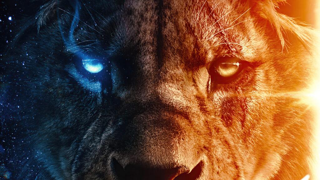 Lion Desktop Background