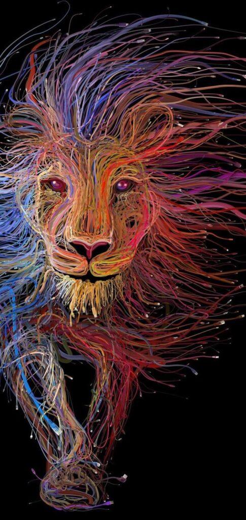 Lion Images Full Hd