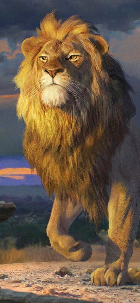 Lion Wallpapes