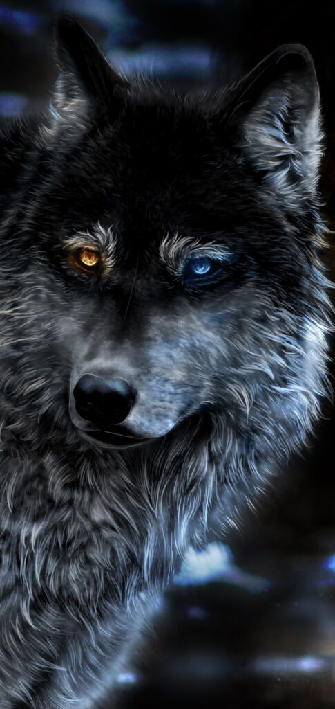 Wallpaper For Wolf