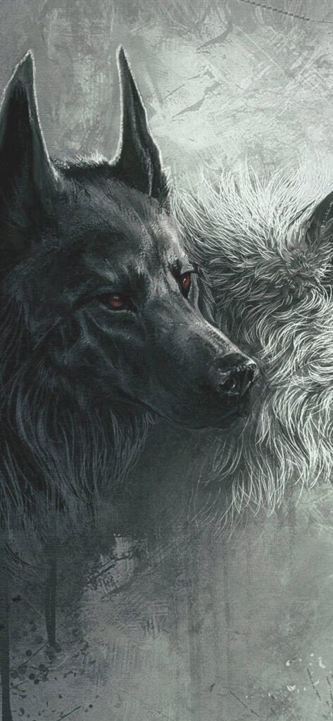 Wolf Background For Iphone