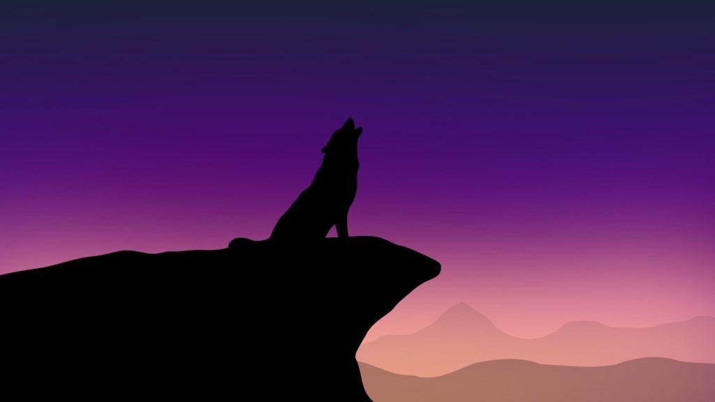 Wolf Desktop Wallpaper