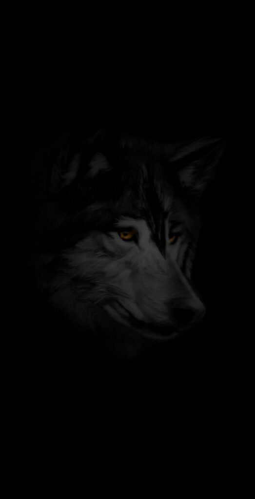 wolf photos 4k