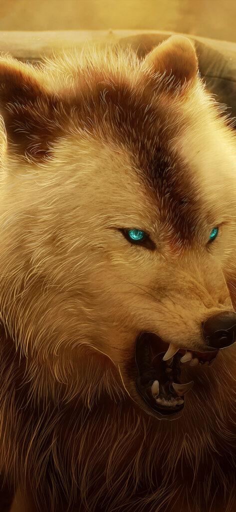 Wolf Wallpaper 4k