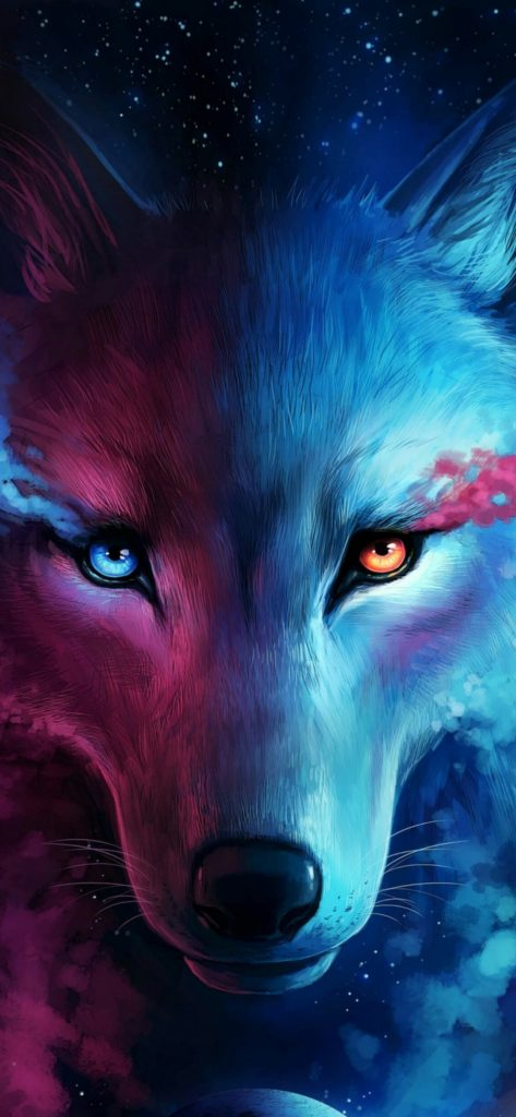 Wolf Wallpapes