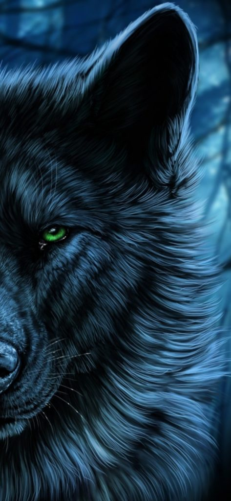 Wolf Wallpapes Full Hd