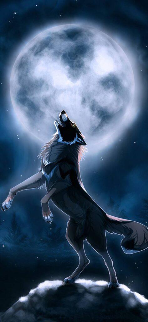 Wolf Iphone X Wallpaper