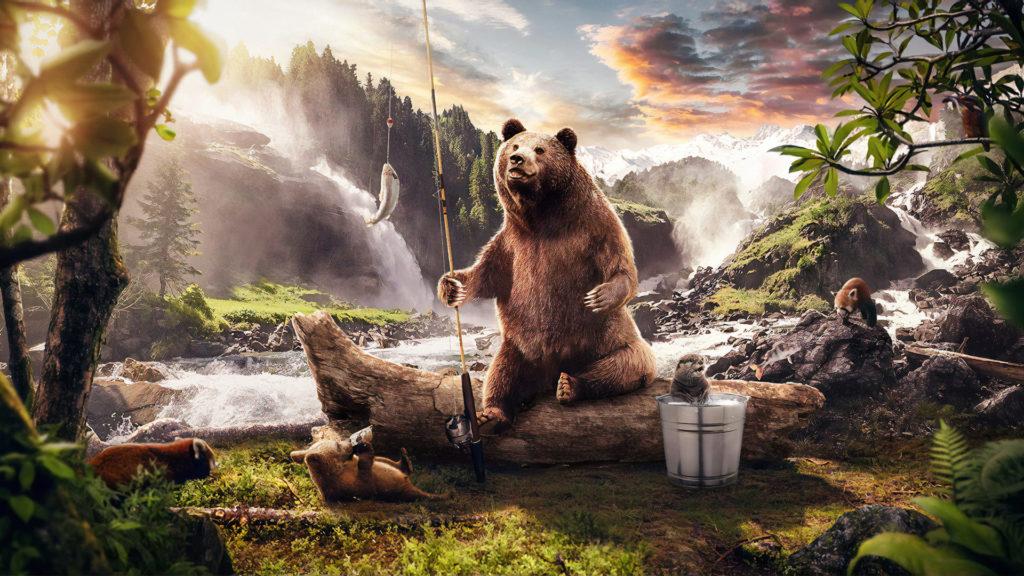 Bear Pc Wallpaper