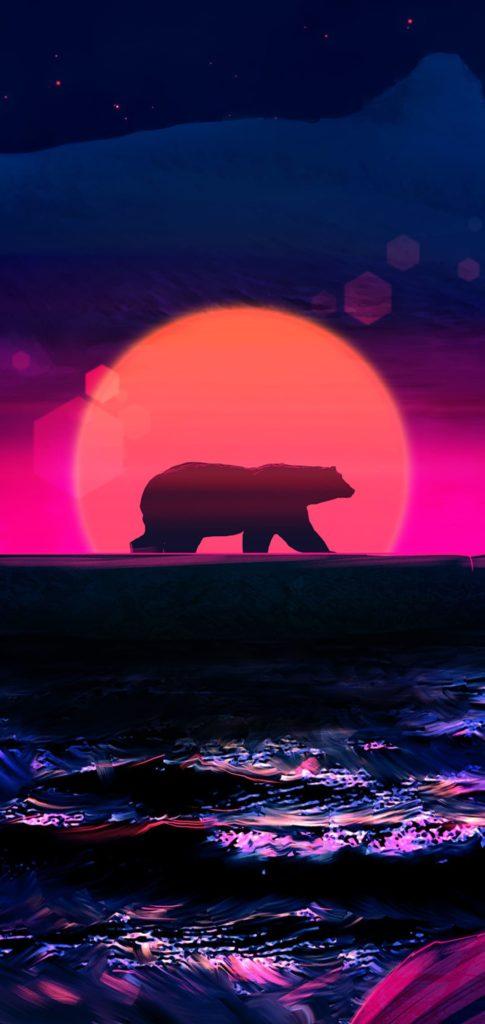 Bear Wallpaper 2020