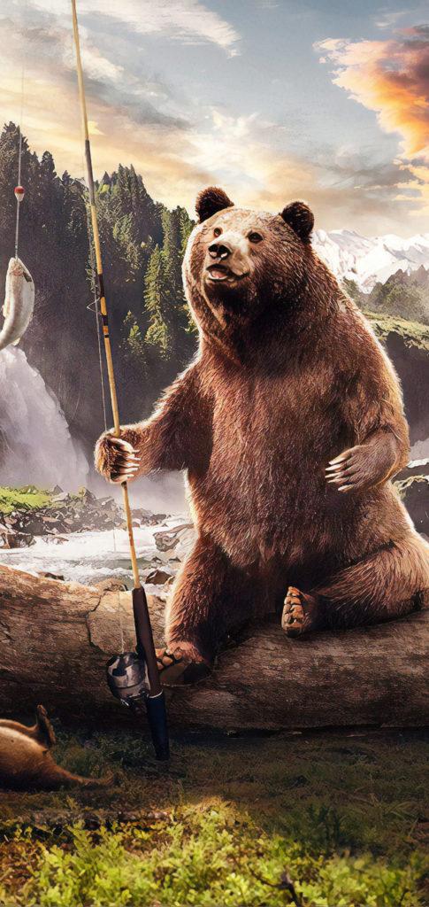 Bear Wallpaper Hd