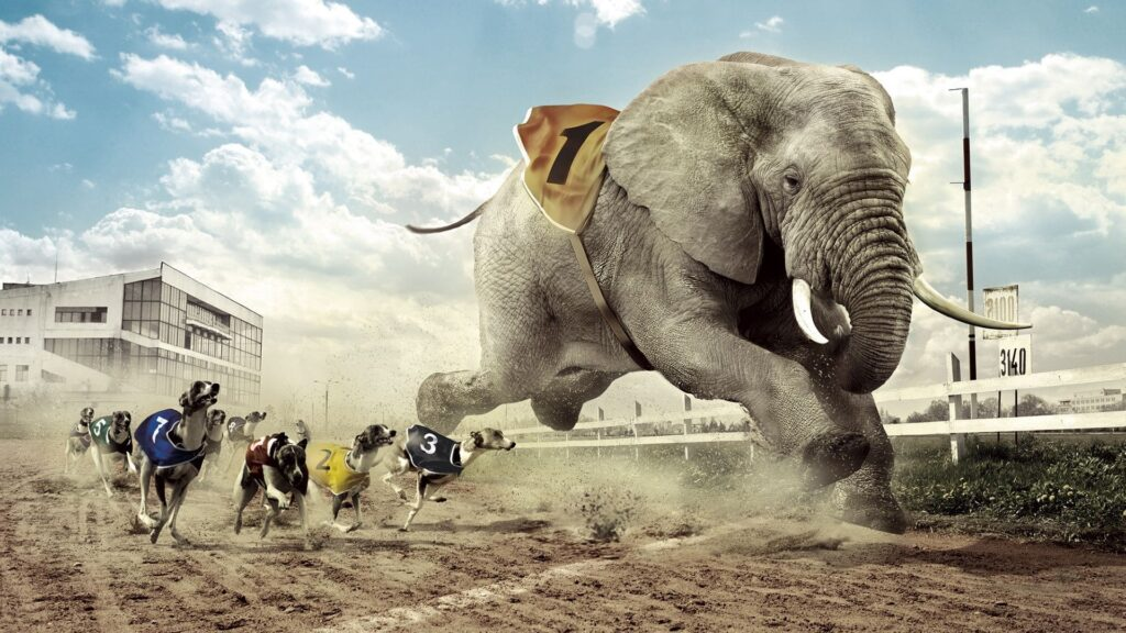 Elephant For Pc Wallpaper 2020