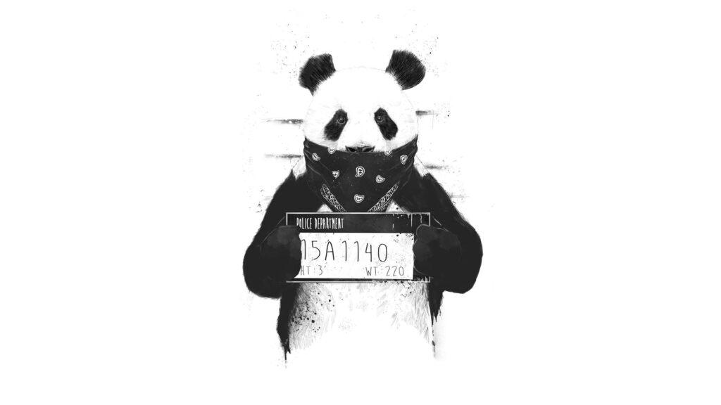 Panda Pc Wallpaper