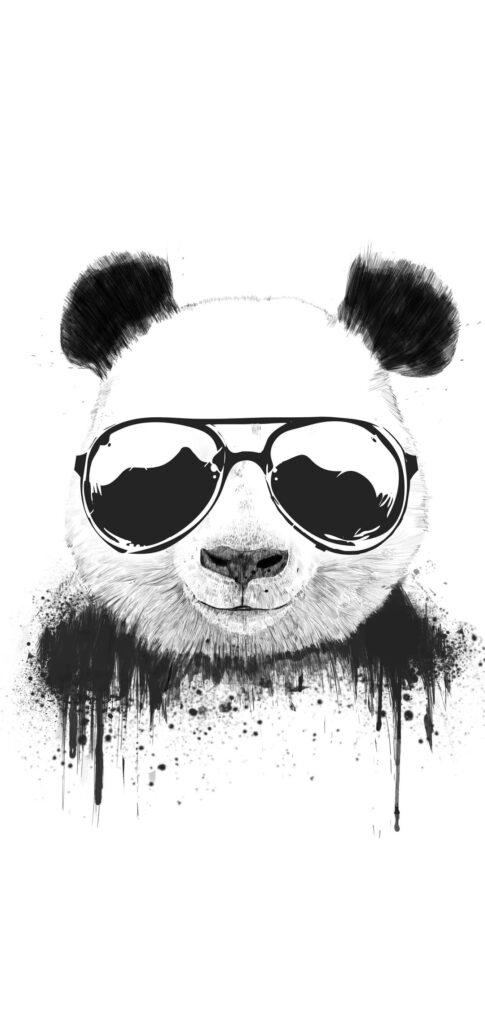 Panda Wallpaper 4k