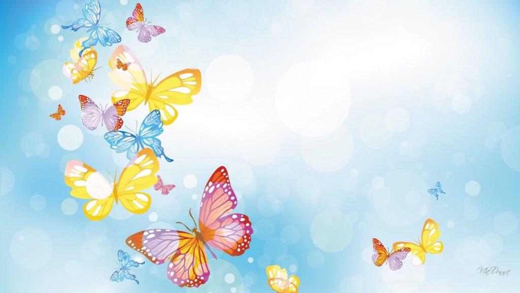 butterfly laptop wallpaper