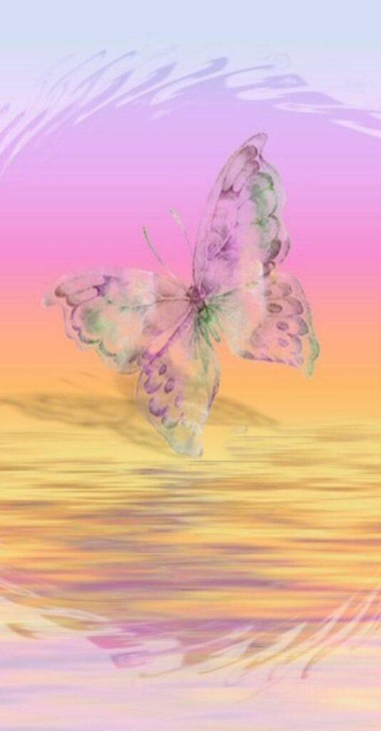 butterfly wallpaper 4k