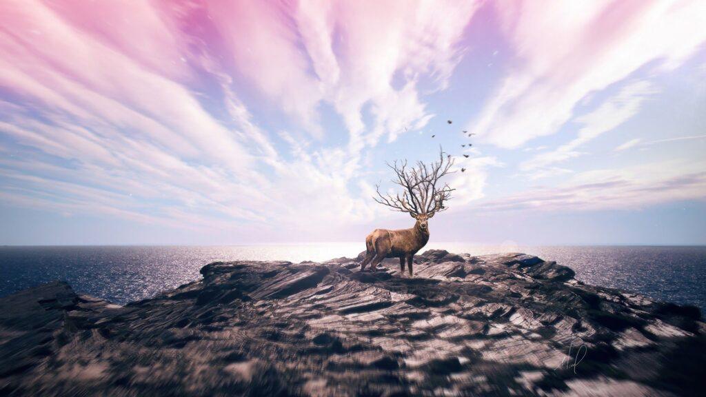 deer laptop wallpaper