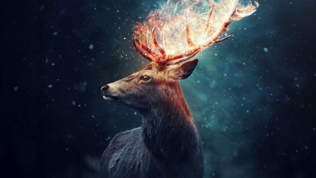 deer pc wallpaper