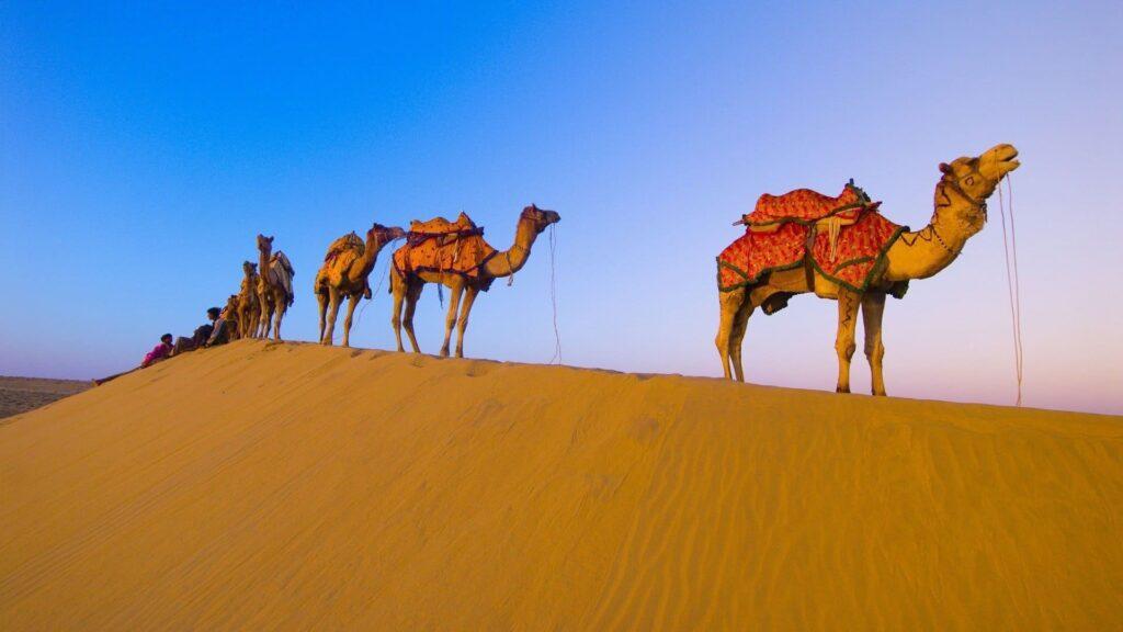 desert computer background