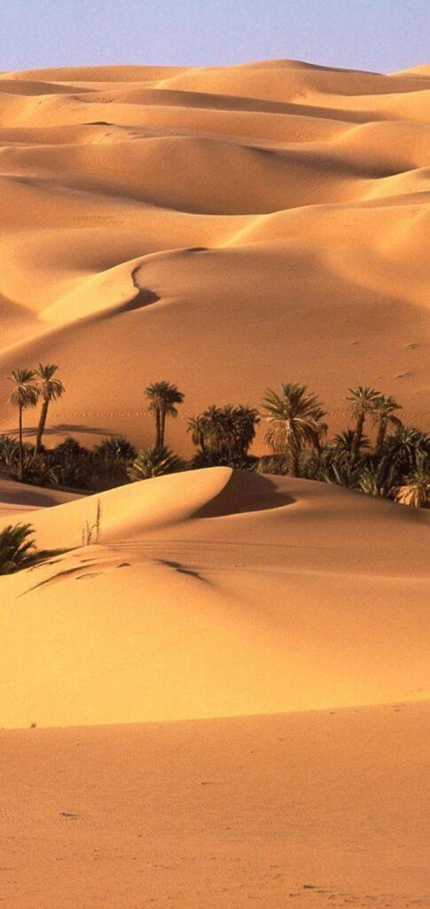 desert wallpaper 4k