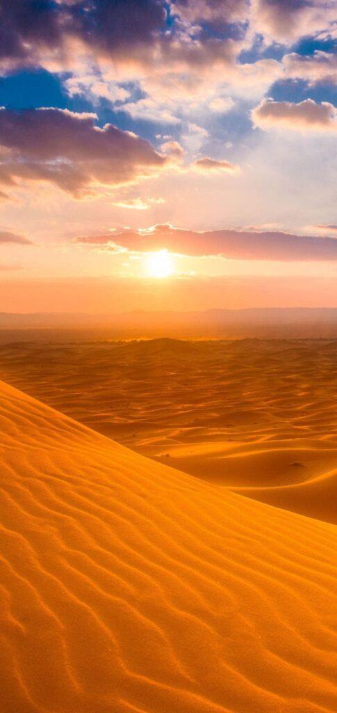 new desert wallpaper