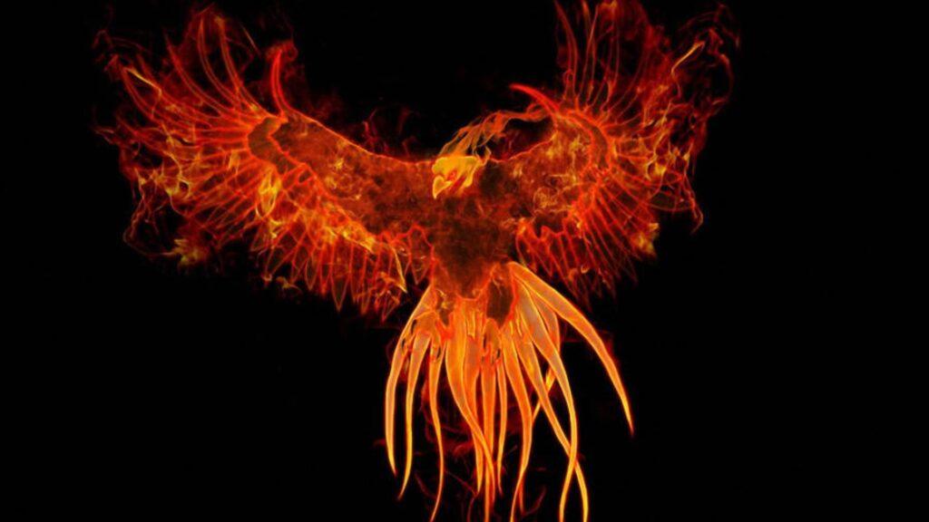 phoenix 4k laptop wallpaper