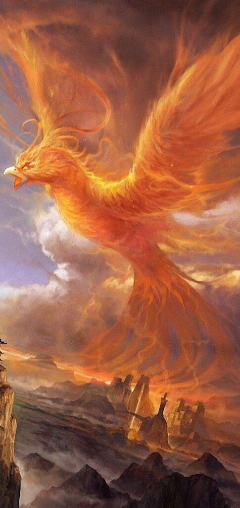 phoenix picutre