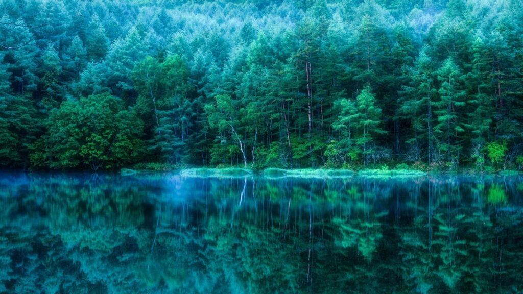 reflection 4k image