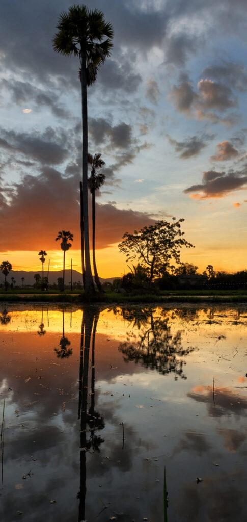 reflection photo