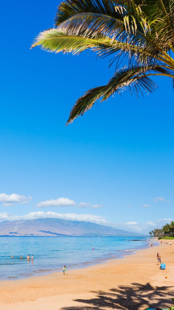 hawaii iphone wallpaper